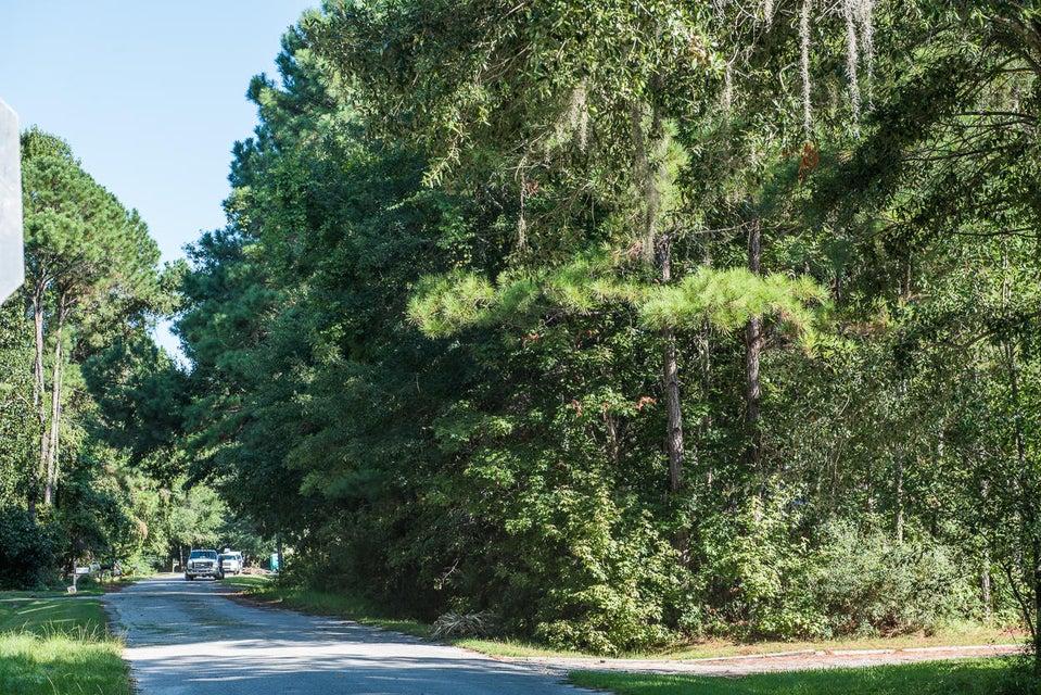 1528 W Palmetto Fort Drive Mount Pleasant, SC 29466