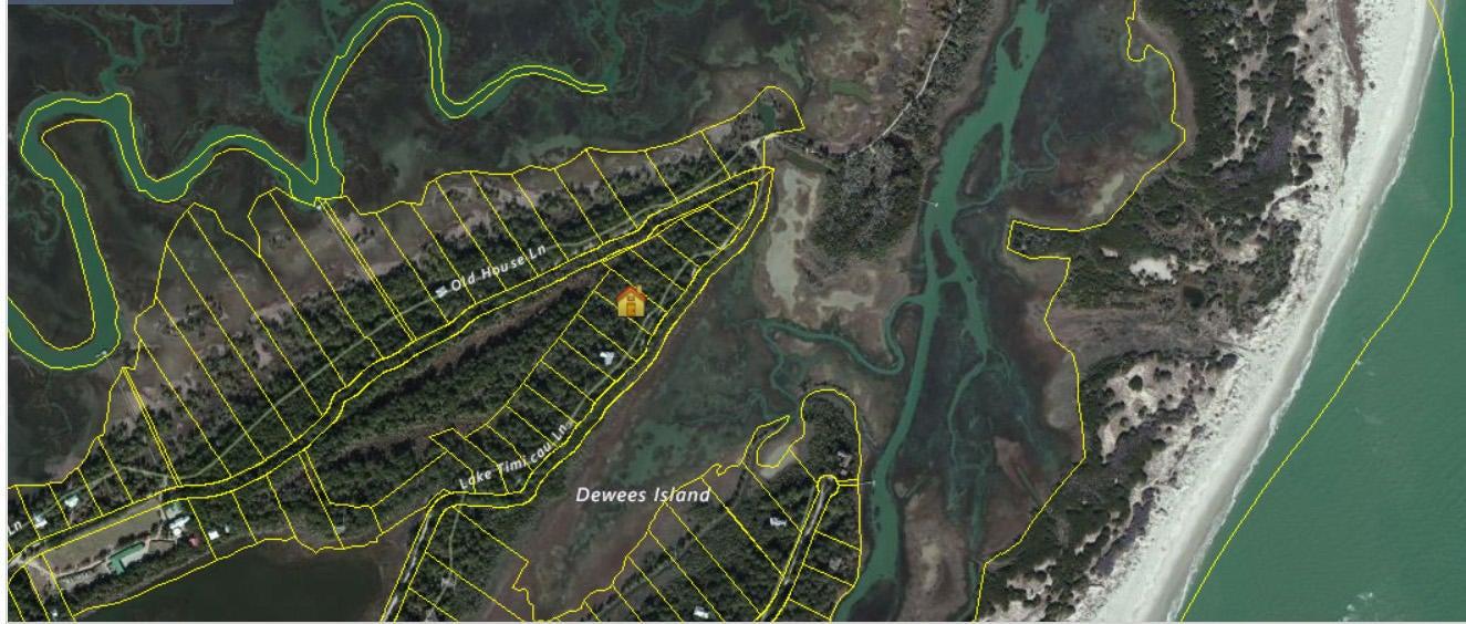 96  Lake Timcau Lane Dewees Island, SC 29451