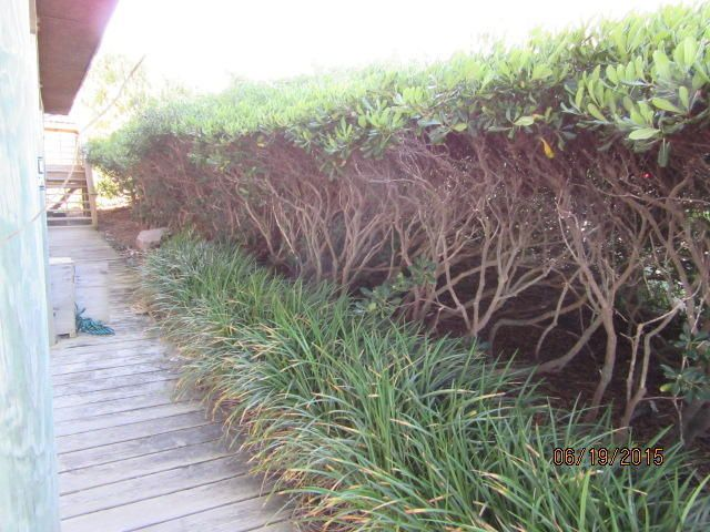 Folly Beach Homes For Sale - 1504 Ashley, Folly Beach, SC - 10