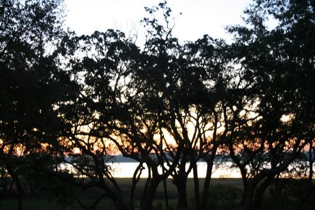 124  Fairbanks Oak Aly Daniel Island, SC 29492