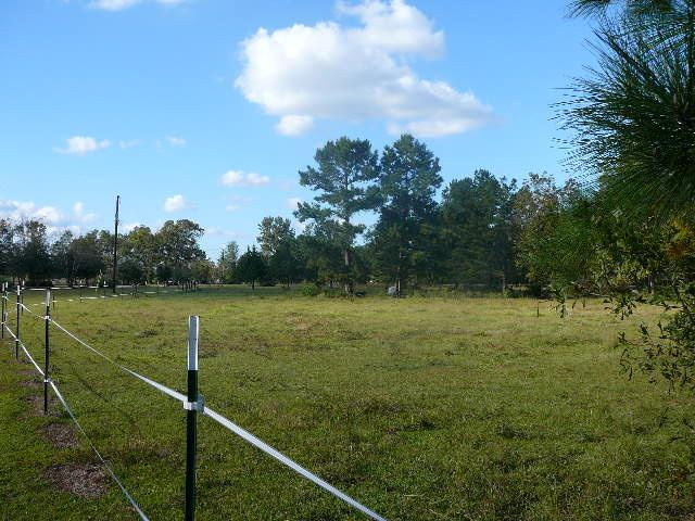 1881  Eutaw Road Holly Hill, SC 29059