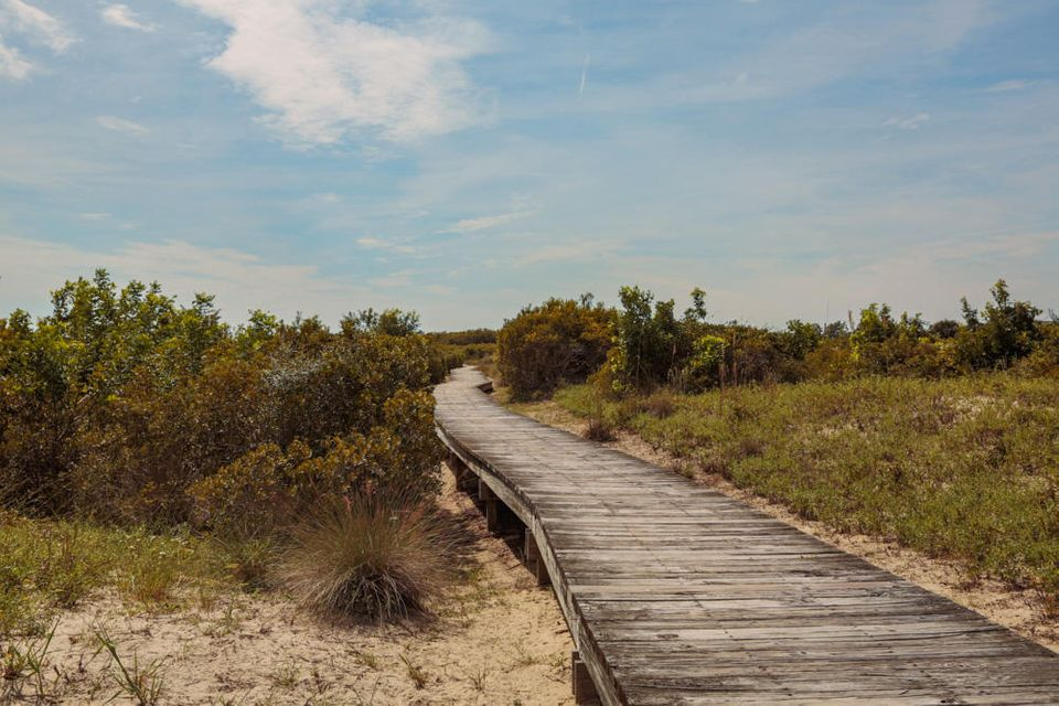 Seabrook Island Lots For Sale - 1172 Oyster Catcher, Seabrook Island, SC - 22