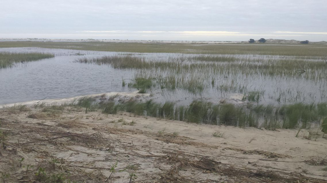 Seabrook Island Lots For Sale - 1172 Oyster Catcher, Seabrook Island, SC - 66