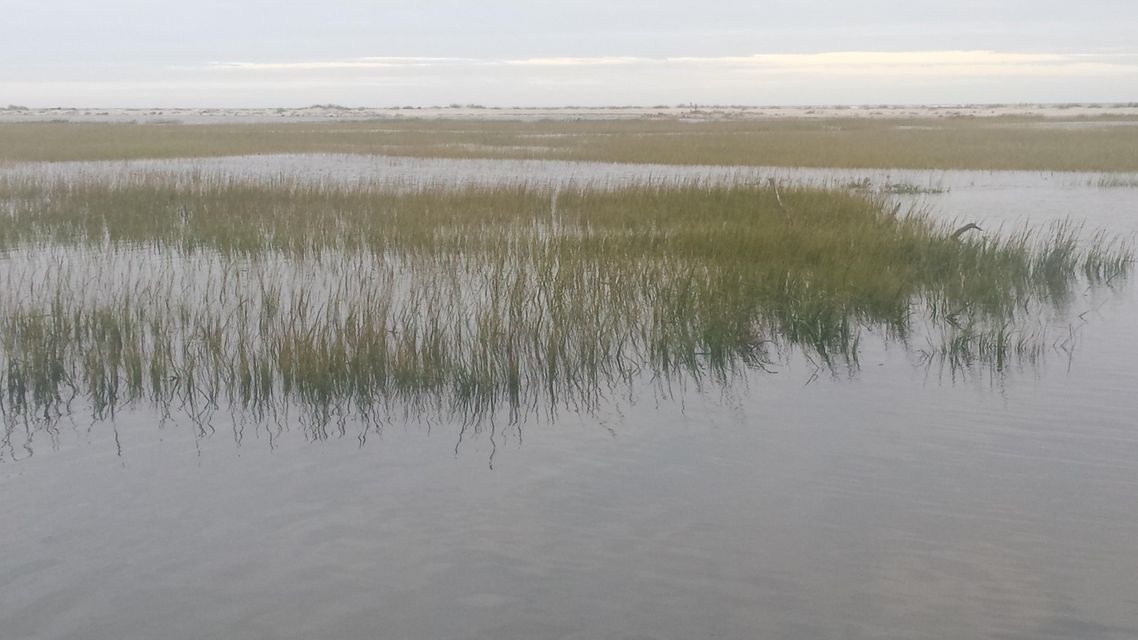 Seabrook Island Lots For Sale - 1172 Oyster Catcher, Seabrook Island, SC - 68