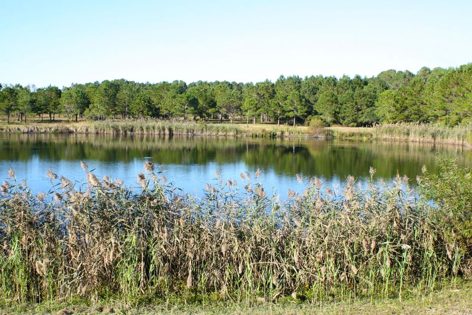 The Farms at Brick House Plantation Lots For Sale - 0 River Road, Johns Island, SC - 1