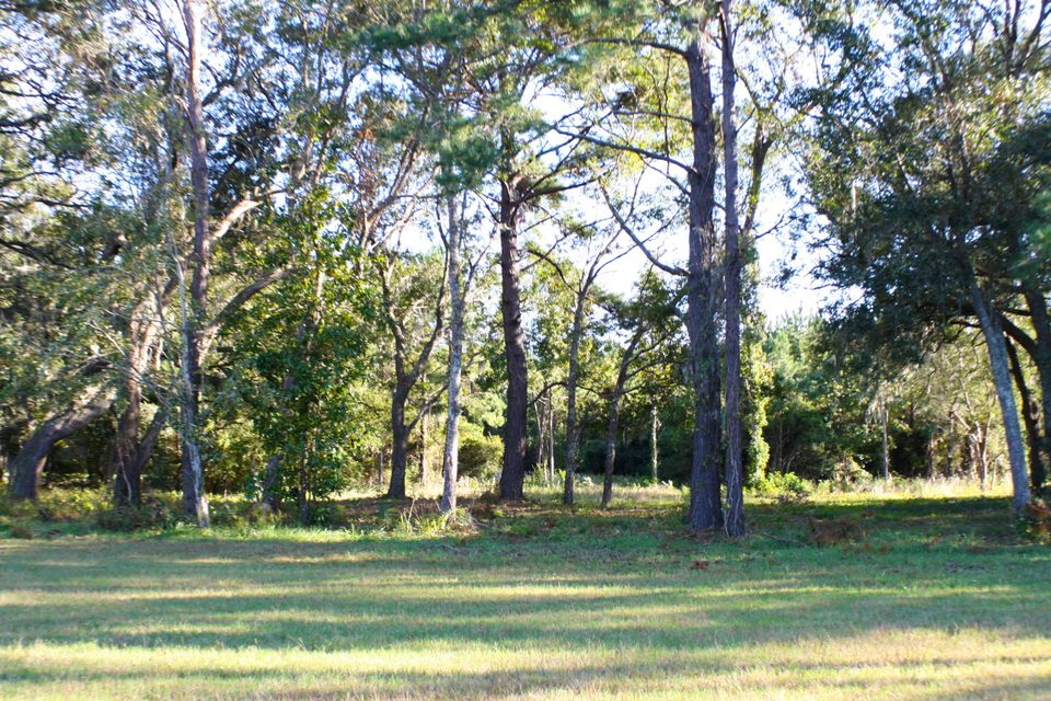 The Farms at Brick House Plantation Lots For Sale - 0 River Road, Johns Island, SC - 2