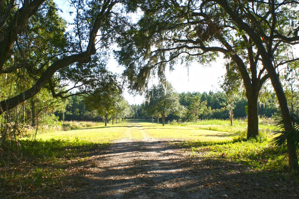 The Farms at Brick House Plantation Lots For Sale - 0 River Road, Johns Island, SC - 3