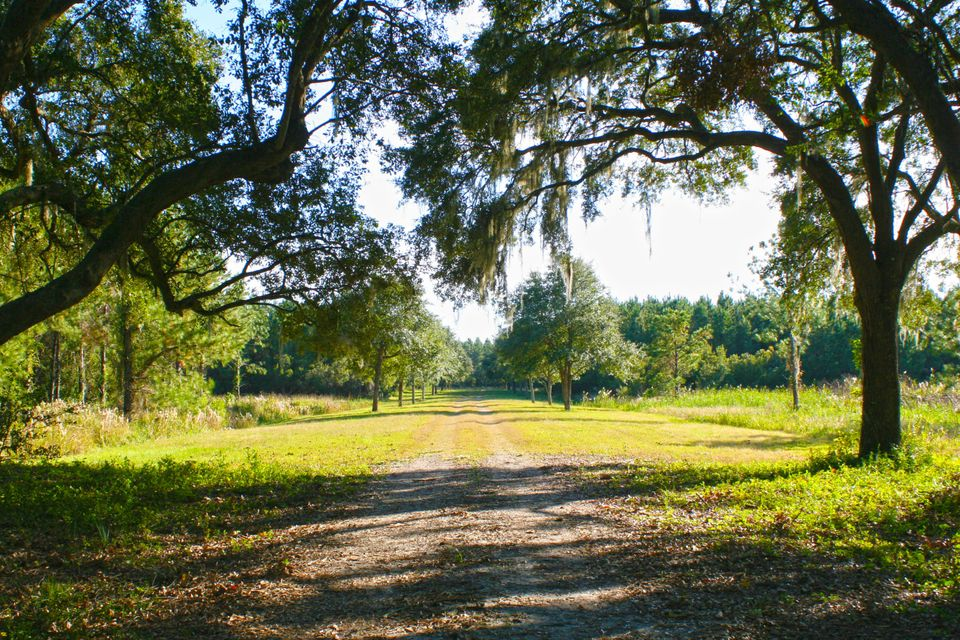 The Farms at Brick House Plantation Lots For Sale - 0 River Road, Johns Island, SC - 4
