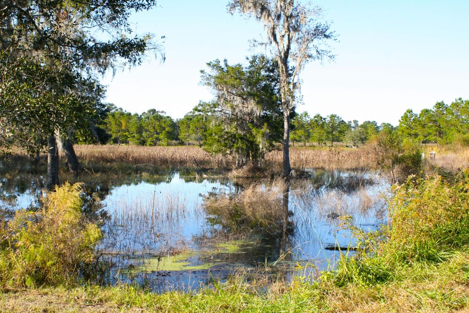The Farms at Brick House Plantation Lots For Sale - 0 River Road, Johns Island, SC - 5