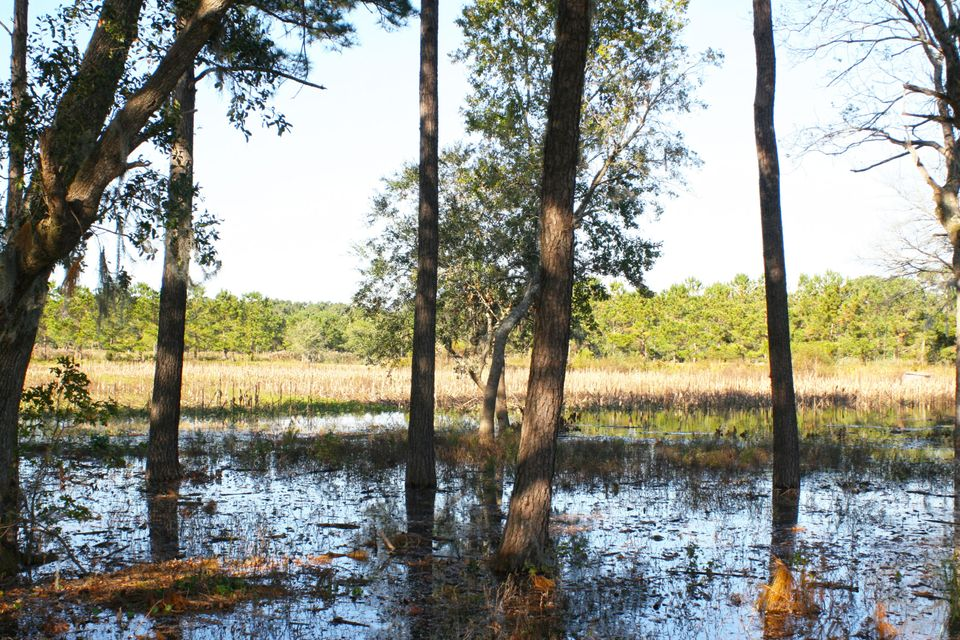 The Farms at Brick House Plantation Lots For Sale - 0 River Road, Johns Island, SC - 8
