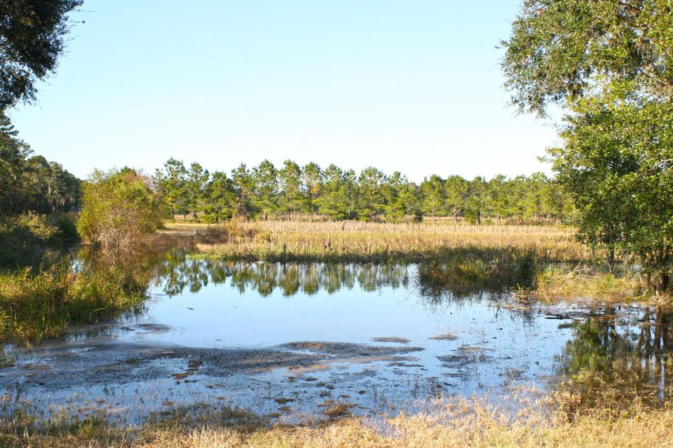 The Farms at Brick House Plantation Lots For Sale - 0 River Road, Johns Island, SC - 9