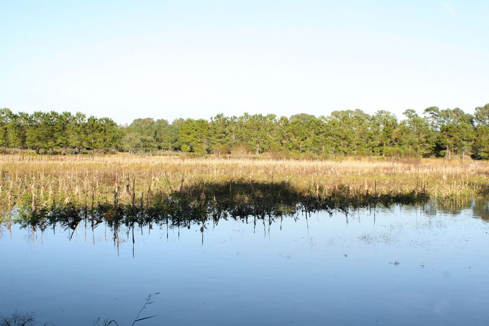 The Farms at Brick House Plantation Lots For Sale - 0 River Road, Johns Island, SC - 10