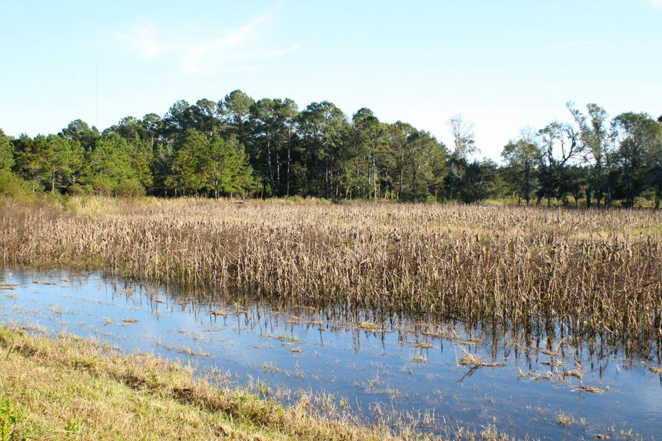 The Farms at Brick House Plantation Lots For Sale - 0 River Road, Johns Island, SC - 11