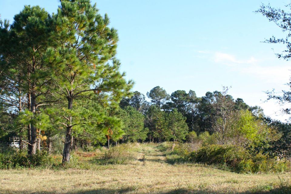 The Farms at Brick House Plantation Lots For Sale - 0 River Road, Johns Island, SC - 12