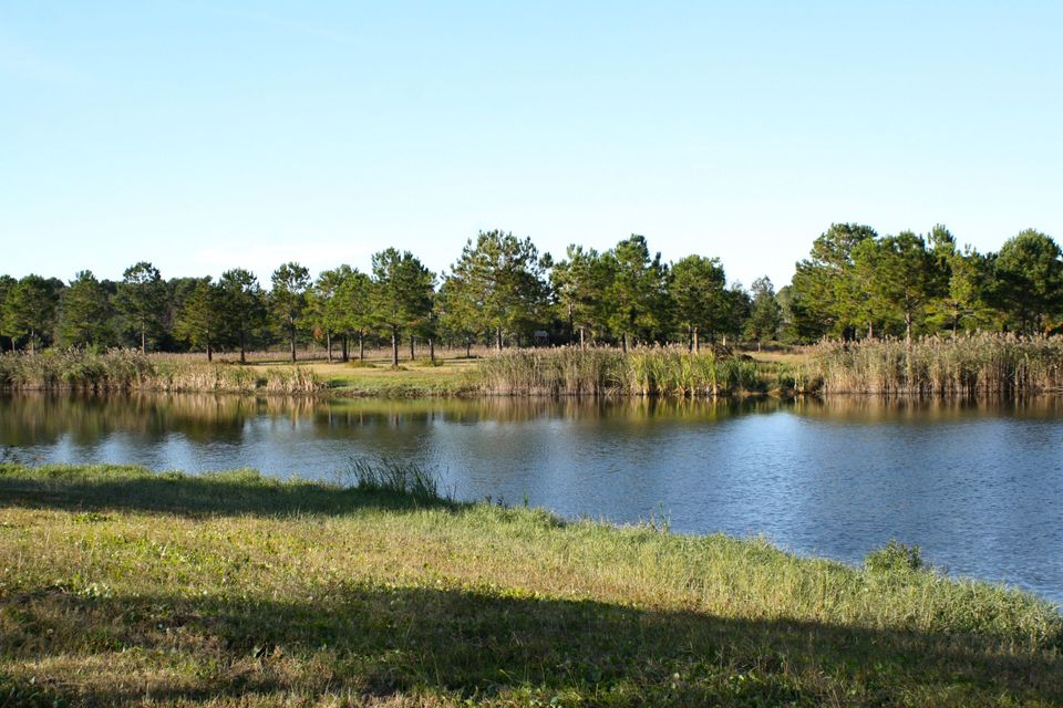 The Farms at Brick House Plantation Lots For Sale - 0 River Road, Johns Island, SC - 14