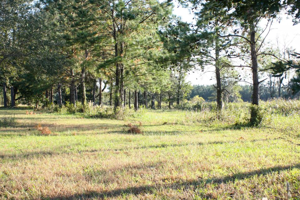 The Farms at Brick House Plantation Lots For Sale - 0 River Road, Johns Island, SC - 15