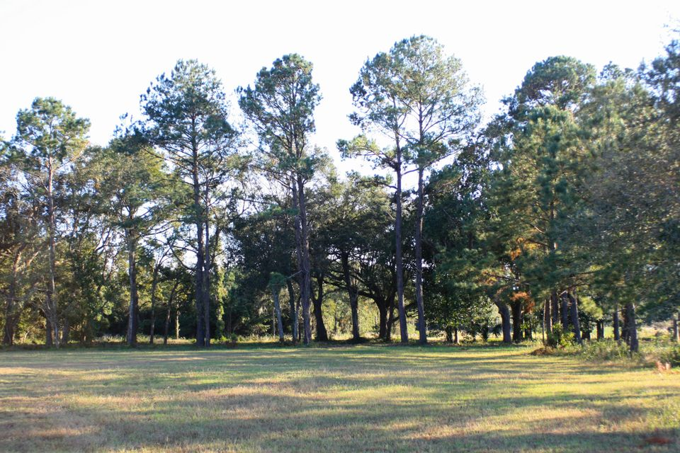 The Farms at Brick House Plantation Lots For Sale - 0 River Road, Johns Island, SC - 16