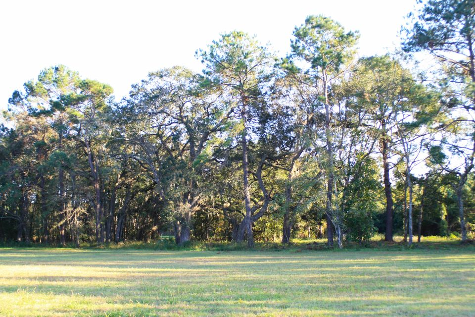 The Farms at Brick House Plantation Lots For Sale - 0 River Road, Johns Island, SC - 17
