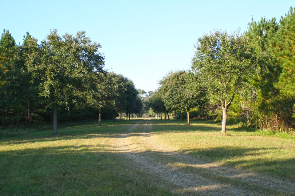 The Farms at Brick House Plantation Lots For Sale - 0 River Road, Johns Island, SC - 18