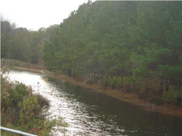 Cypress Hollow Road Harleyville, SC 29448