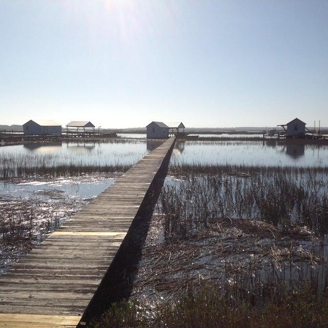 Lighthouse Point Homes For Sale - 603 Seaward, Charleston, SC - 4