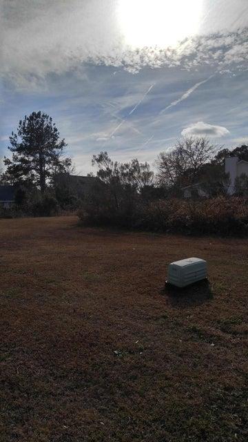 1339 Winterberry Avenue, Goose Creek, SC 29445