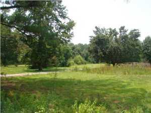 253  Turtle Pond Road Summerville, SC 29486