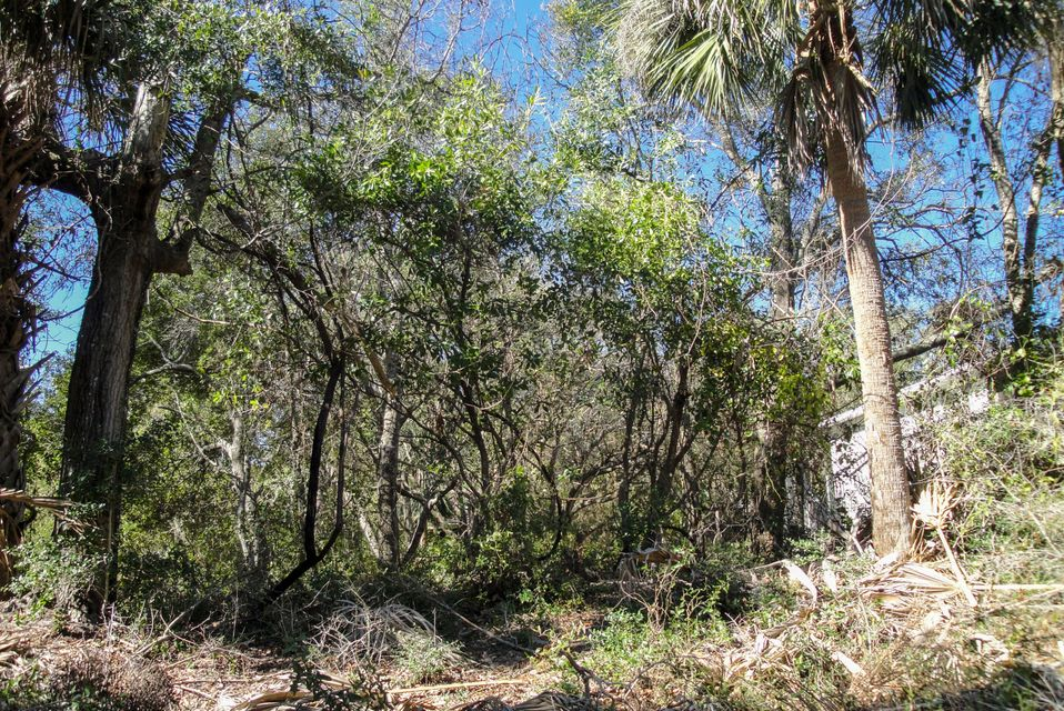 518  Jungle Road Edisto Beach, SC 29438