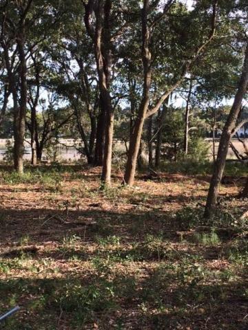 1137  Hills Plantation Drive Charleston, SC 29412