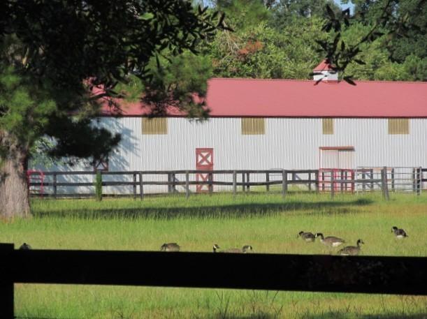 701  Truluck Vineyards Lake City, SC 29560