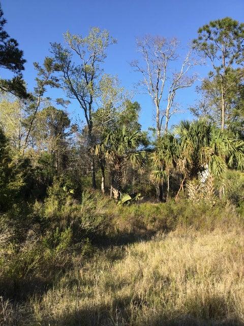 1456  Dupree Creek Lane Awendaw, SC 29429