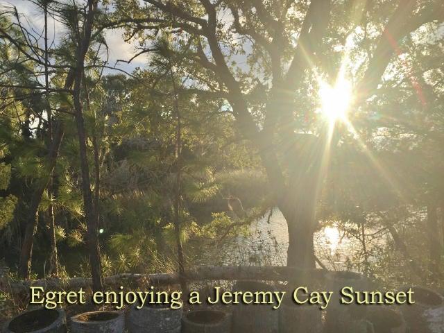 Jeremy Cay Homes For Sale - 3 Lost Village, Edisto Island, SC - 61