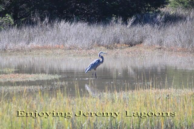 Jeremy Cay Homes For Sale - 3 Lost Village, Edisto Island, SC - 59