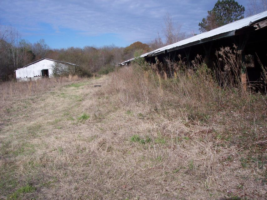 475  Gaines Circle Cottageville, SC 29435