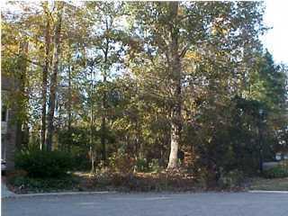 132  Mckelvey Place Goose Creek, SC 29445