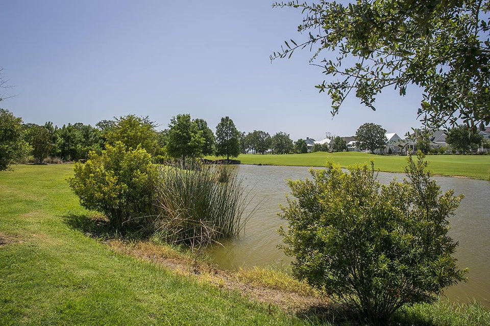 Daniel Island Park Homes For Sale - 547 Wading, Charleston, SC - 68