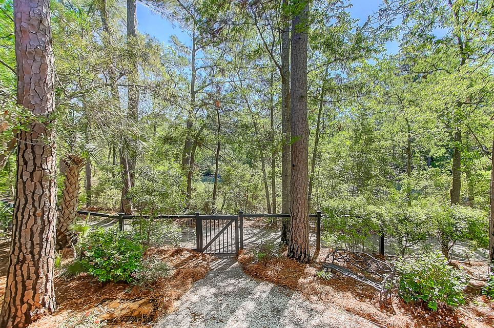 Ion Homes For Sale - 30 Hopetown, Mount Pleasant, SC - 28