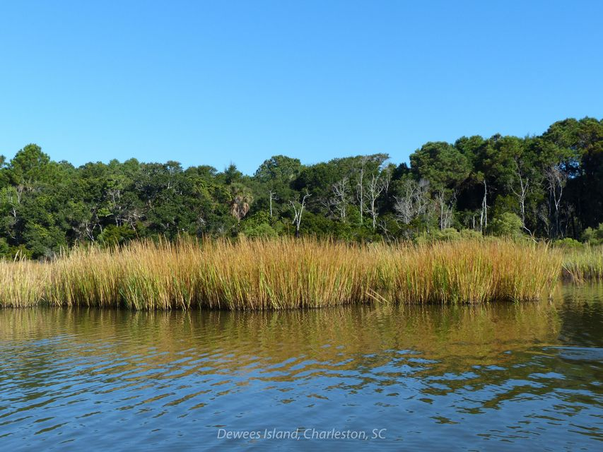 134  Old House Dewees Island, SC 29451