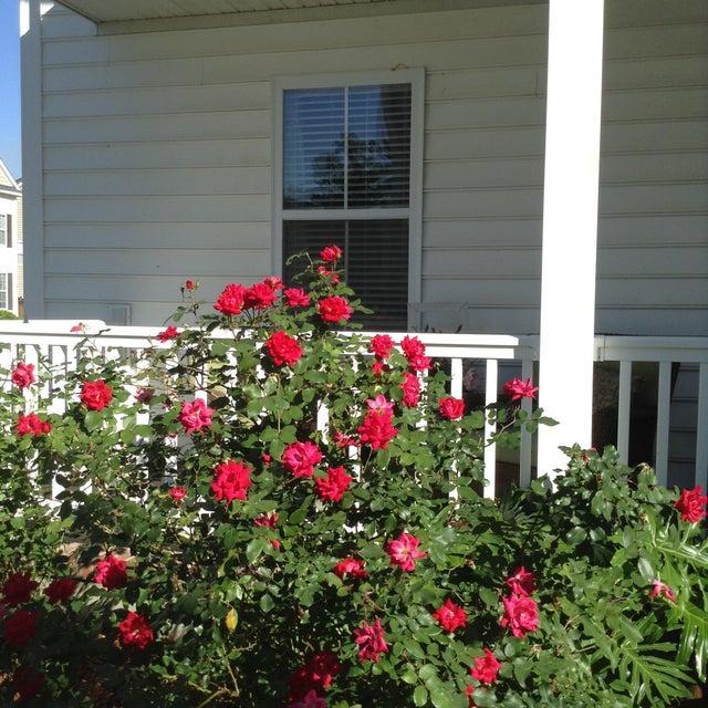 102  Old Jackson Road Goose Creek, SC 29445
