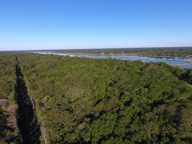 None Lots For Sale - 2952 Bohicket, Johns Island, SC - 29