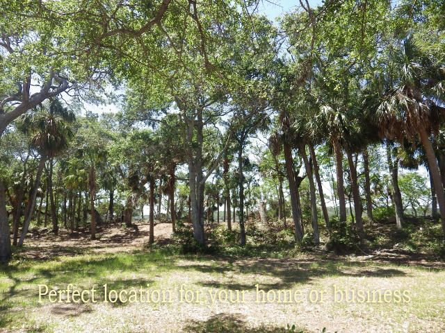 121  Jungle Road Edisto Island, SC 29438