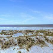 315 W Ashley Avenue Folly Beach, SC 29439