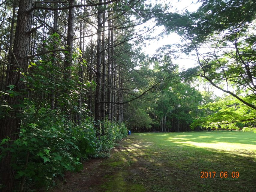 391  Timber Bay Drive Cottageville, SC 29435