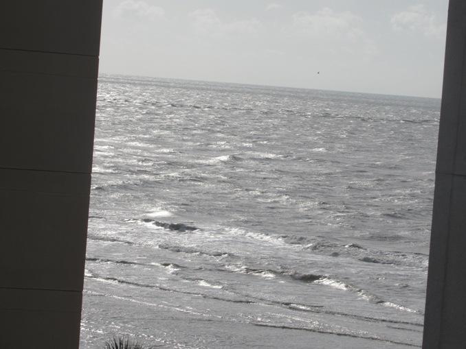 9002  Palmetto Drive Isle Of Palms, SC 29451