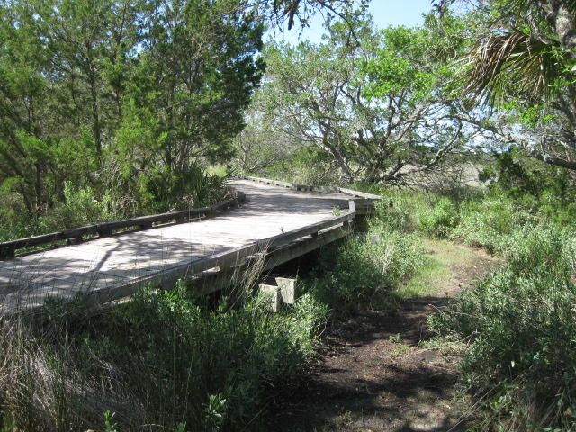 38  Eel Island Road Edisto Island, SC 29438