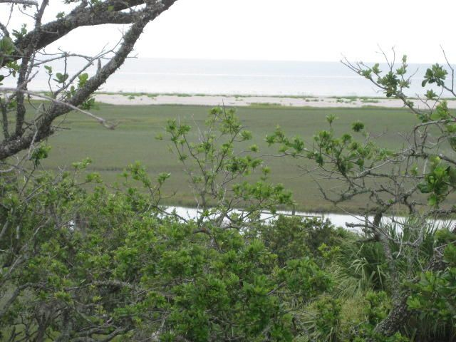 890  Hammocks Way Edisto Island, SC 29438
