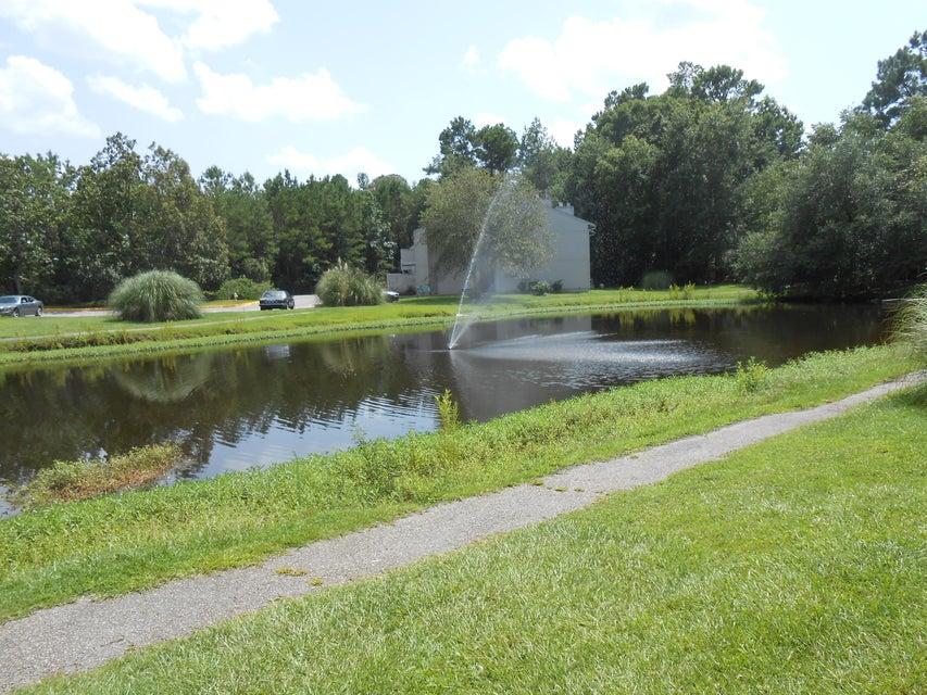 303  Greenmeadow Drive Goose Creek, SC 29445