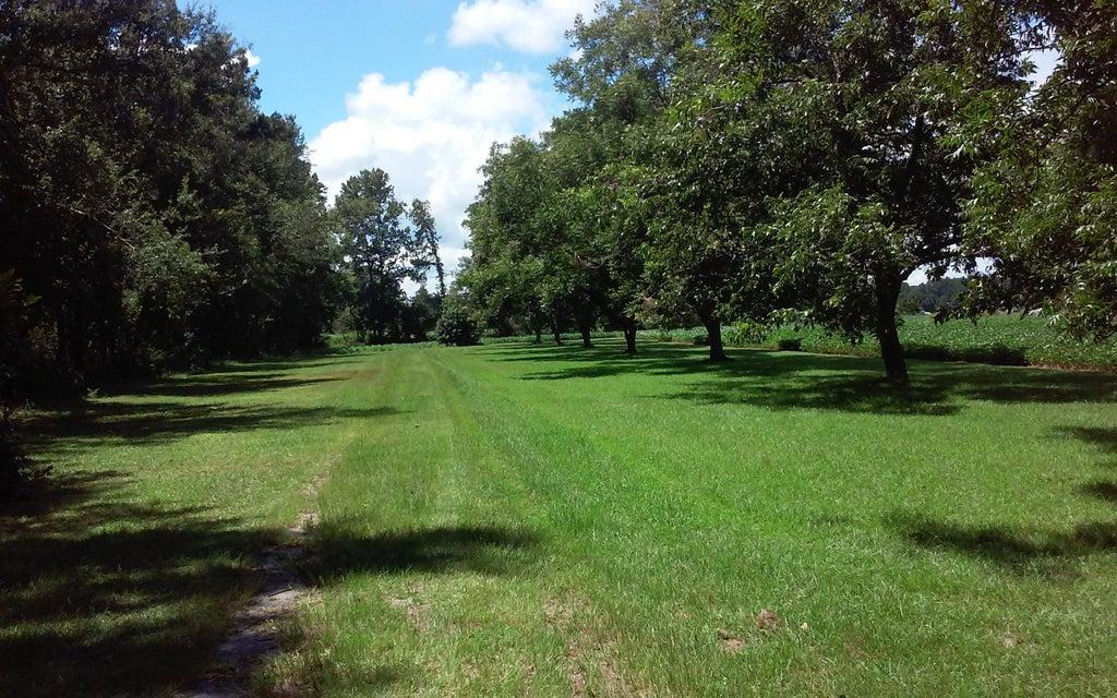 205  Odd Farm Lane Holly Hill, SC 29059
