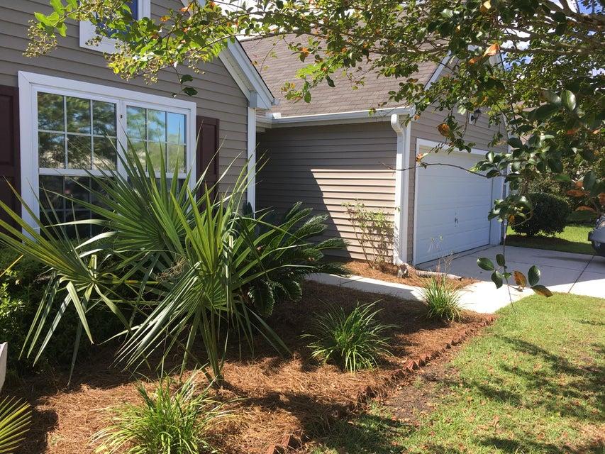 1282  Palm Cove Drive Charleston, SC 29492