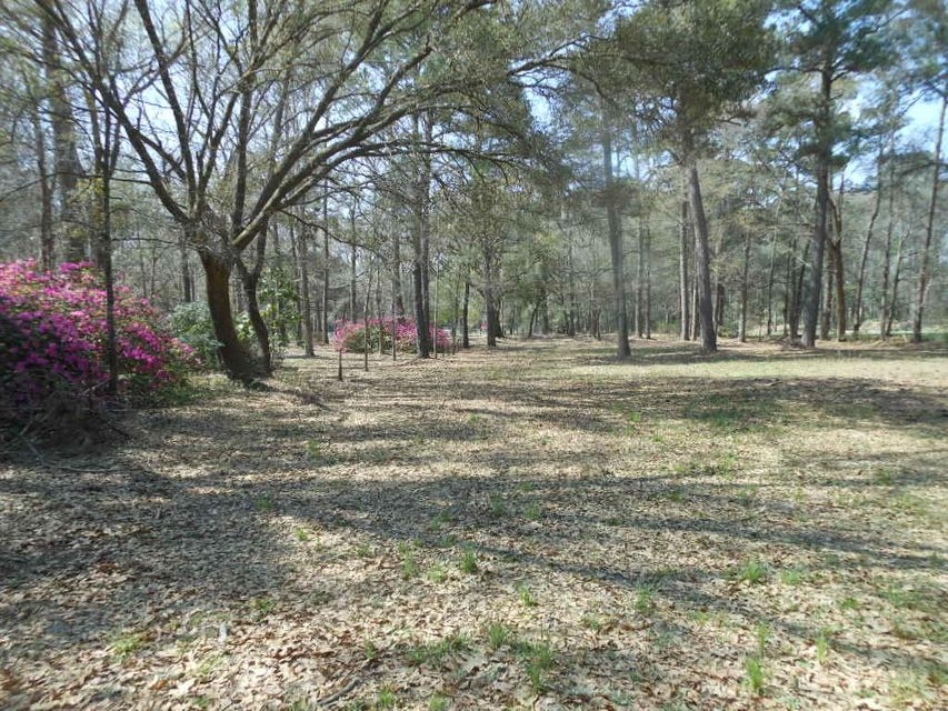 4227  Chisolm Road Johns Island, SC 29455